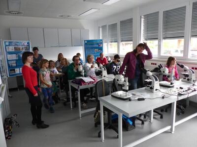 Frauen treffen elixhausen - Helpfau-uttendorf dating berry