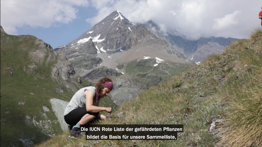 181121-alpine-seed-conservation.png