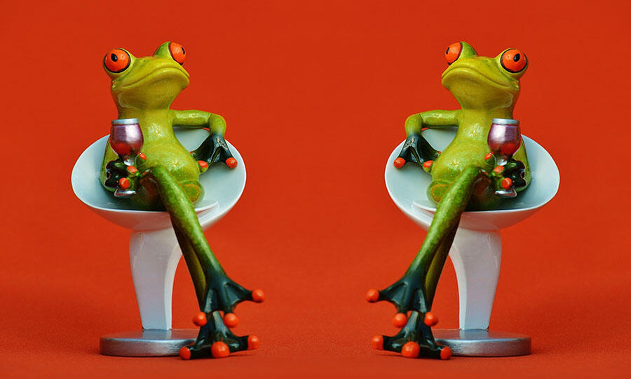 frogs-1397997_1920