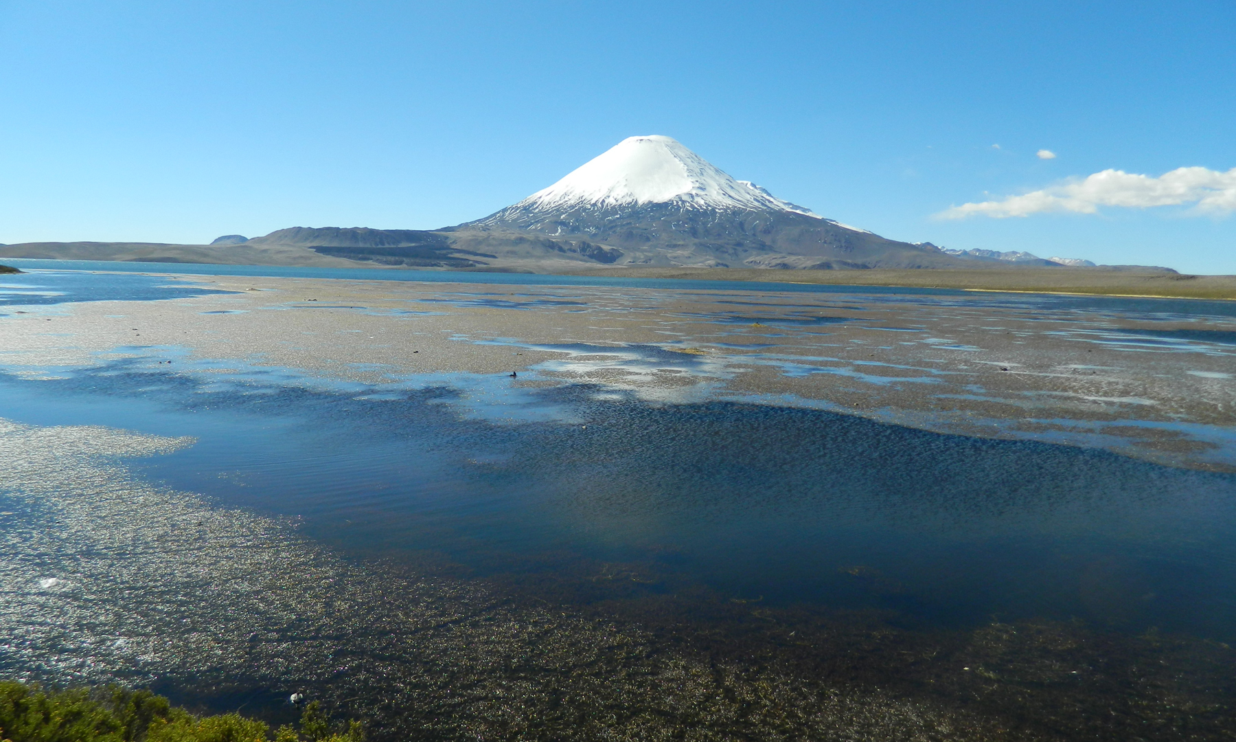 Lake at Lauca National Park in Chile.