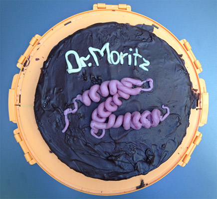 three-helix bundle cake for Moritz, PhD graduation party, 2015