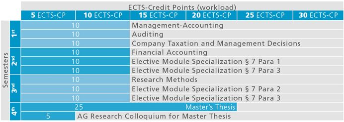 Subject master thesis accounting