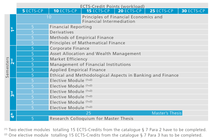 master thesis financial analysis