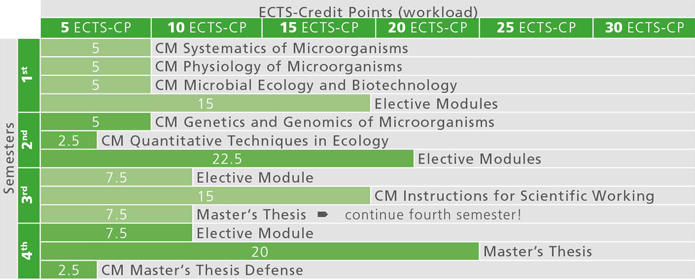 thesis in microbiology Program requirements  all students are required to take two semesters of the 1 credit course current issues in microbiology  with the approval of the thesis.